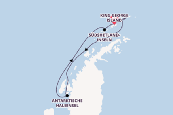 7 Tage Antarktis Kreuzfahrt