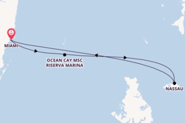Vivace viaggio da Miami verso Ocean Cay MSC Riserva Marina
