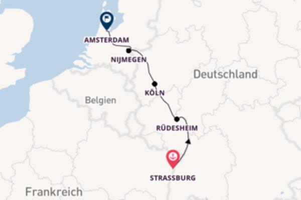 Herrliche Reise nach Amsterdam