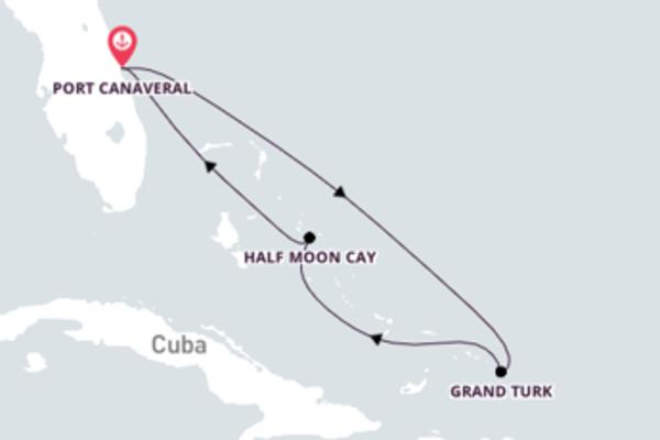 Impressionante cruzeiro de 7 dias com a Carnival Cruise Line