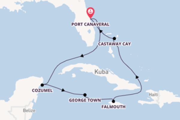 8 Tage westliche Karibik über Falmouth