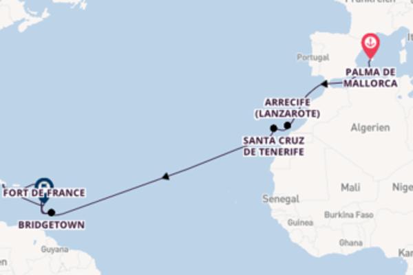 Atemberaubende Reise mit der Neue Mein Schiff 2