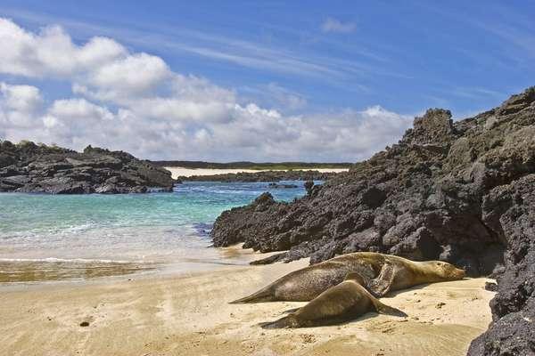 San Cristobal Island, Galapagos, Ecuador