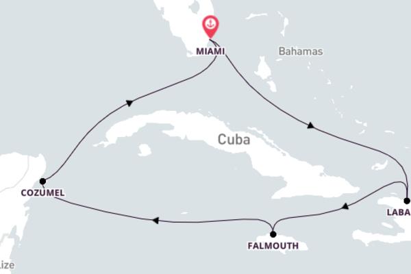 Discover Vibrant Cozumel from Miami