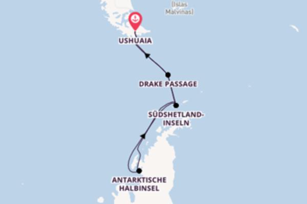 Genießen Sie Südshetland-Inseln auf der Silver Wind