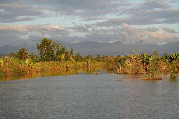 Maroantsetra (Nosy Mangabe), Madagascar