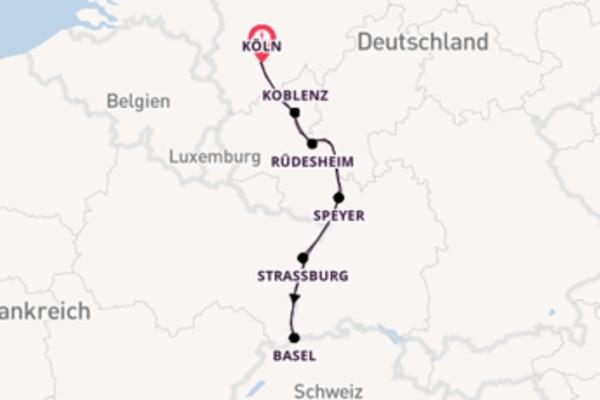 Silvesterkreuzfahrt am Rhein