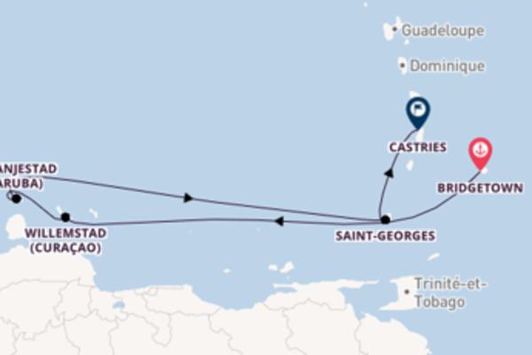 8 jours de navigation à bord du bateau Britannia depuis Bridgetown