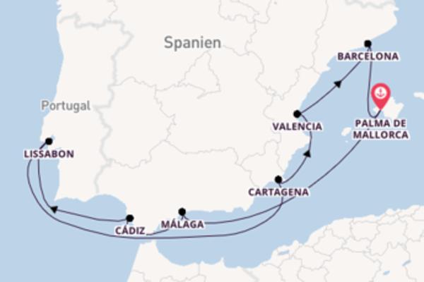 Zauberhafte Reise nach Palma de Mallorca