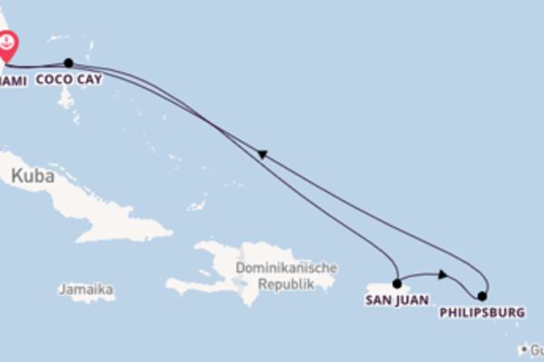 Miami und San Juan genießen