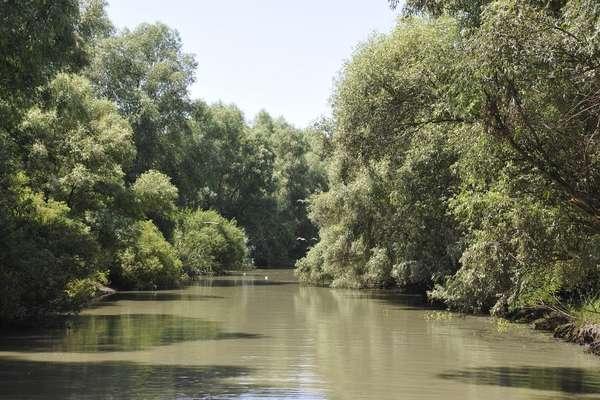Donau-Mündungspassage