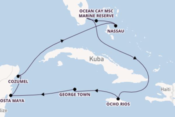 Erleben Sie 10 Tage Cozumel und Miami