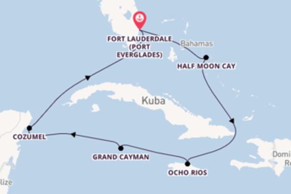 In 8 Tagen nach Fort Lauderdale