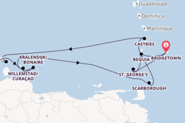 11 day cruise on board the Silver Dawn from Bridgetown