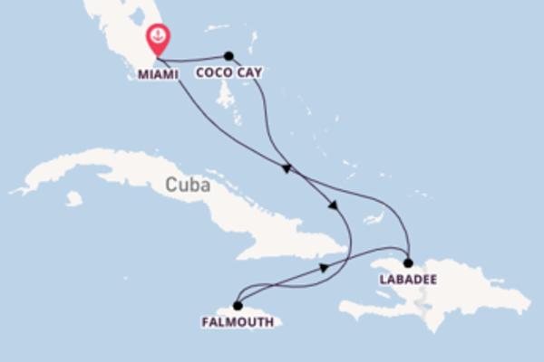 7-daagse reis naar Miami