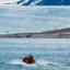 Spitsbergen and Polar Bears Longyearbyen Roundtrip