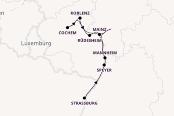 Wunderschöne Kreuzfahrt über Speyer nach Frankfurt am Main