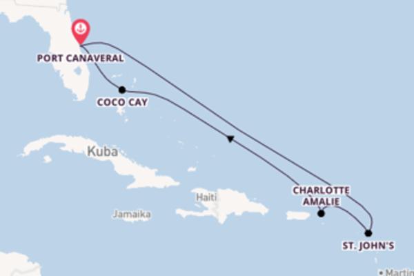 Kreuzfahrt mit der Harmony of the Seas nach Port Canaveral