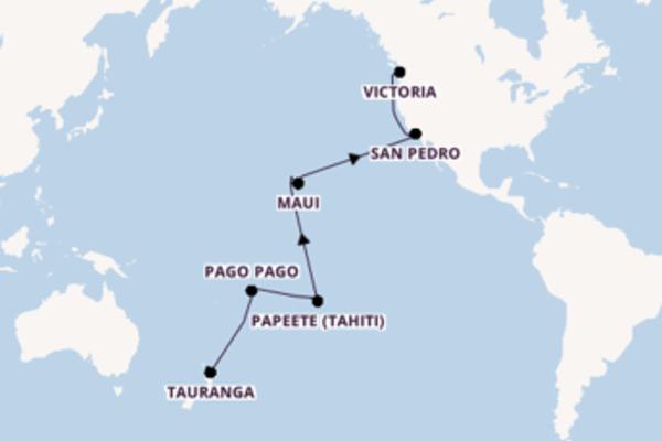 Erleben Sie Honolulu ab Auckland