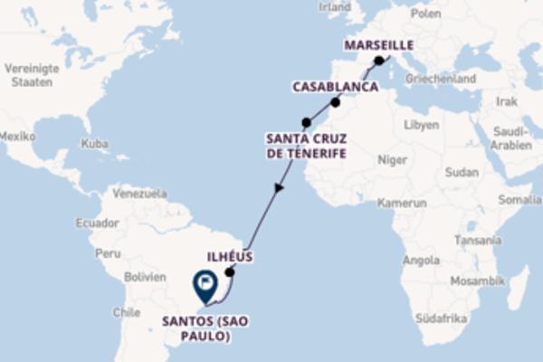 19-tägige Kreuzfahrt von Savona nach Santos (Sao Paulo)