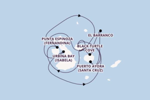 Cruise met Celebrity Cruises naar het sprankelende Baltra