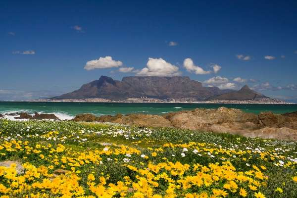 Expedition with MSC Cruises from Cape Town