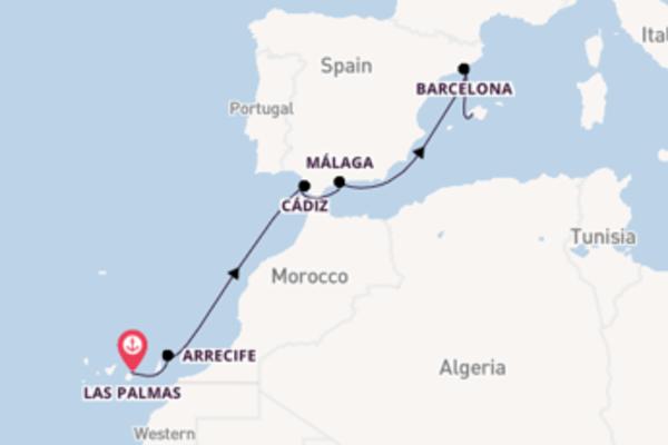 Cruise met AIDA naar het aantrekkelijke Palma de Mallorca
