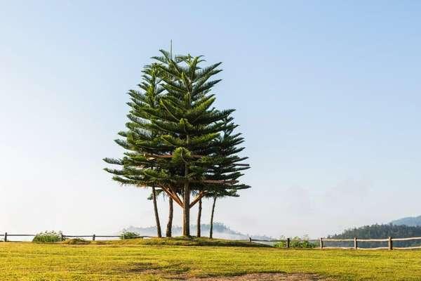 Cascade, Norfolkinseln, Australien
