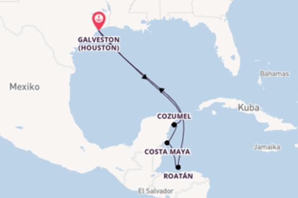 Eindrucksvolle Kreuzfahrt über Costa Maya ab Galveston