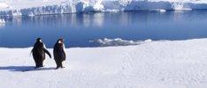 Faszinierende Antarktis