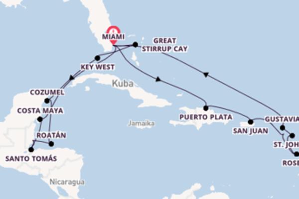 In 21 Tagen nach Miami über Costa Maya