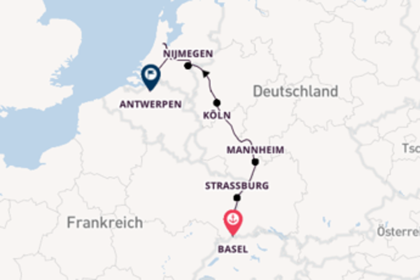 Rhein Highlights Kurs Antwerpen