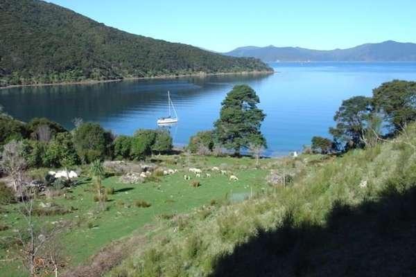 Резолюшн Бэй, Новая Зеландия