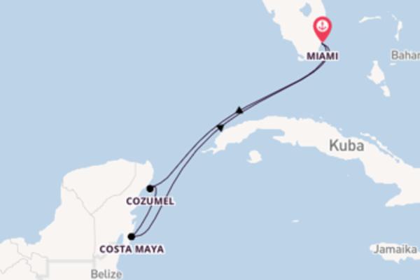Genießen Sie 6 Tage Cozumel und Miami