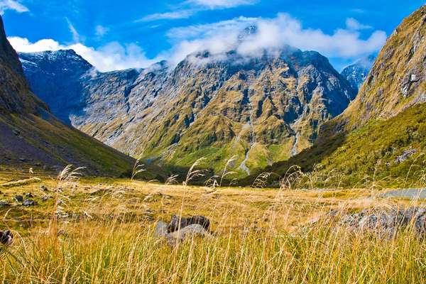 Nancy Sound, New Zealand