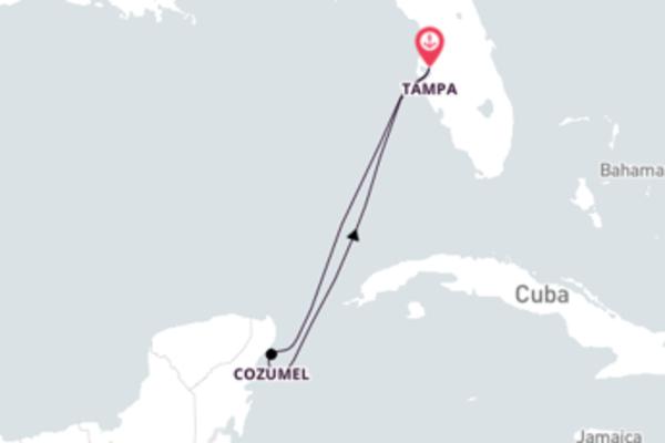 Tampa - Cozumel - Tampa