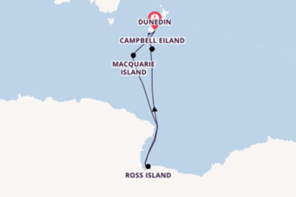 Geniet van een 23-daagse cruise naar Dunedin