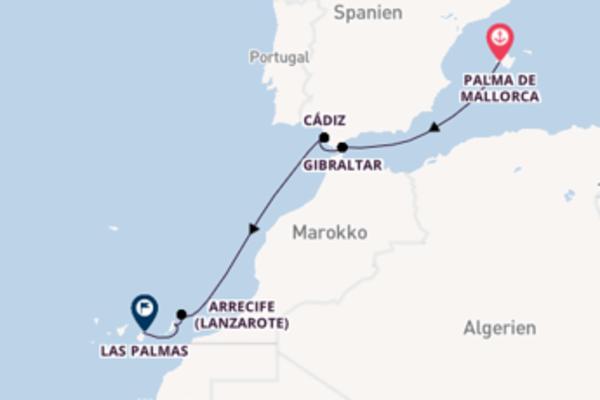 Eindrucksvolle Kreuzfahrt von Palma de Mallorca nach Las Palmas
