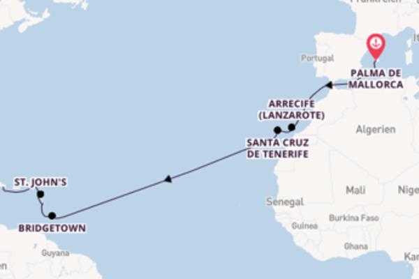 Wunderschöne Reise mit der Neue Mein Schiff 2