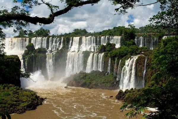 Jaú National Park, Brazil