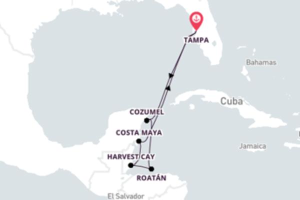 Aventura de 8 dias a bordo do Norwegian Jade