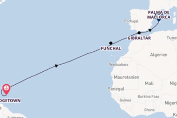 Erleben Sie 14 Tage Funchal und Palma de Mallorca