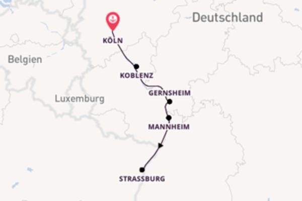 Erkunden Sie Mannheim ab Köln