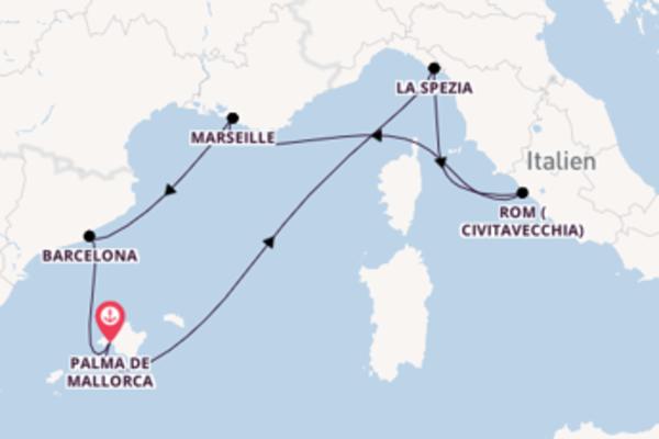 Großartige Reise nach Palma de Mallorca