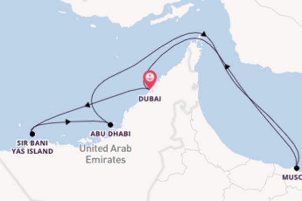 Cruising from Dubai via Abu Dhabi