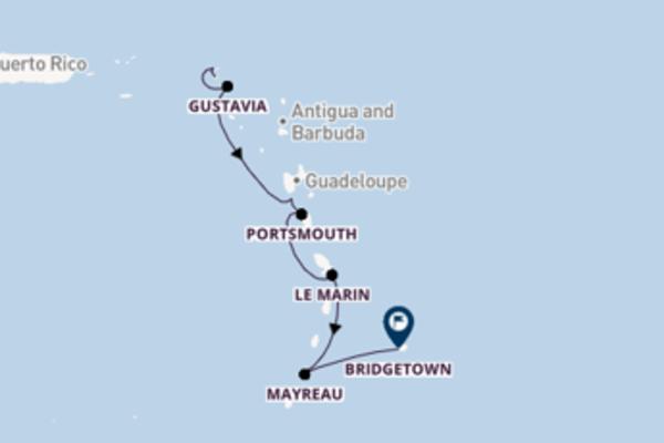 Cruise naar Bridgetown via Iles des Saintes