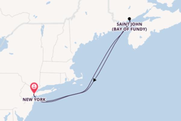 Geniet van het waanzinnige Saint John (Bay of Fundy) met Carnival Cruise Line