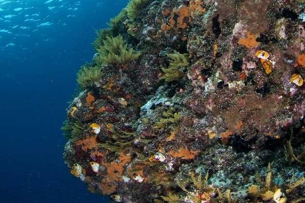 Ambon (Moluccas), Indonesia