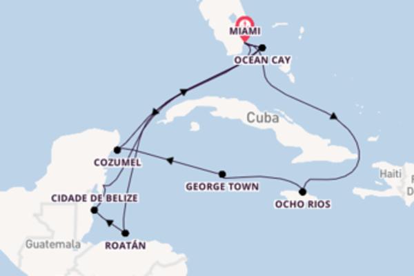 Curta 15 dias a bordo do MSC Meraviglia