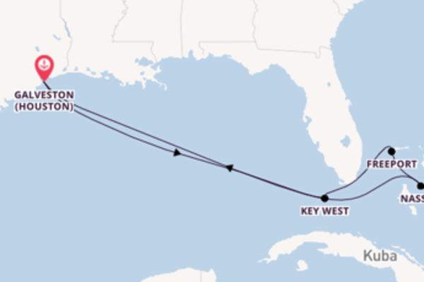 Kreuzfahrt mit der Carnival Dream nach Galveston (Houston)